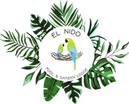 El Nido Pool & Garden Lodge